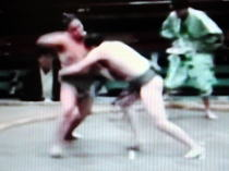 相撲 打っ棄り
